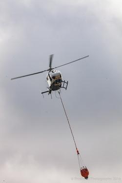 Te Marua Rural Fire 9601