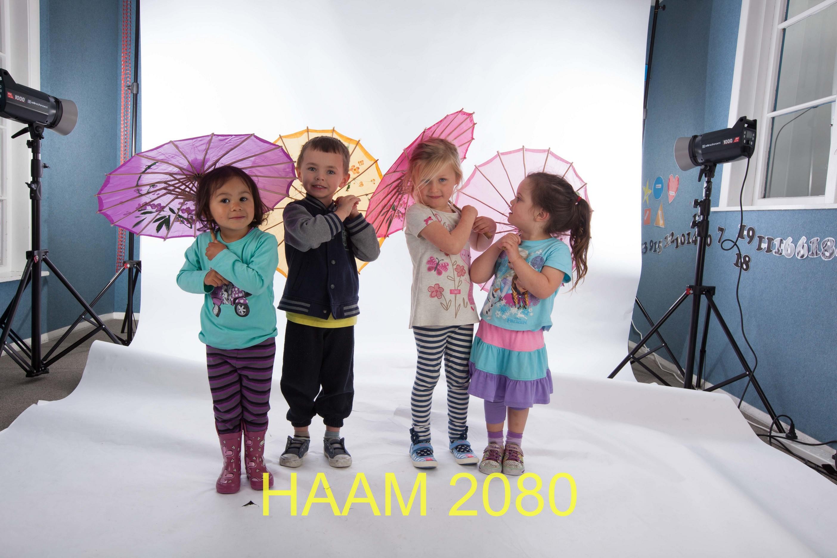 HAAM 2080
