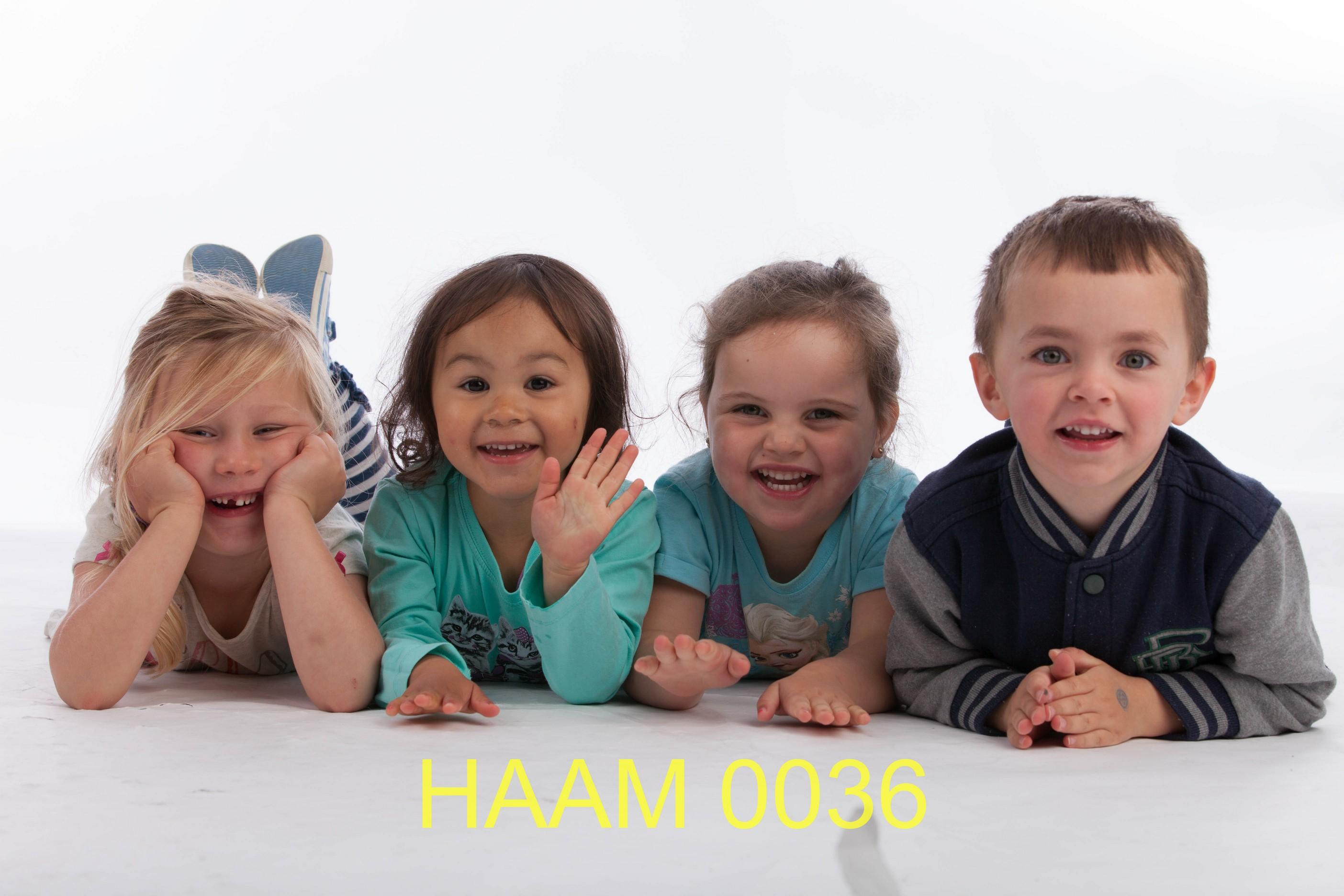 HAAM 0036