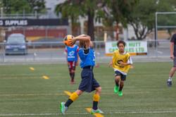 UHCC Soccer Coach 4439
