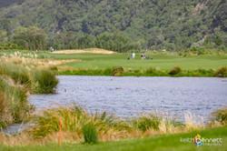 HVCC Tall Poppy Golf Day 5433