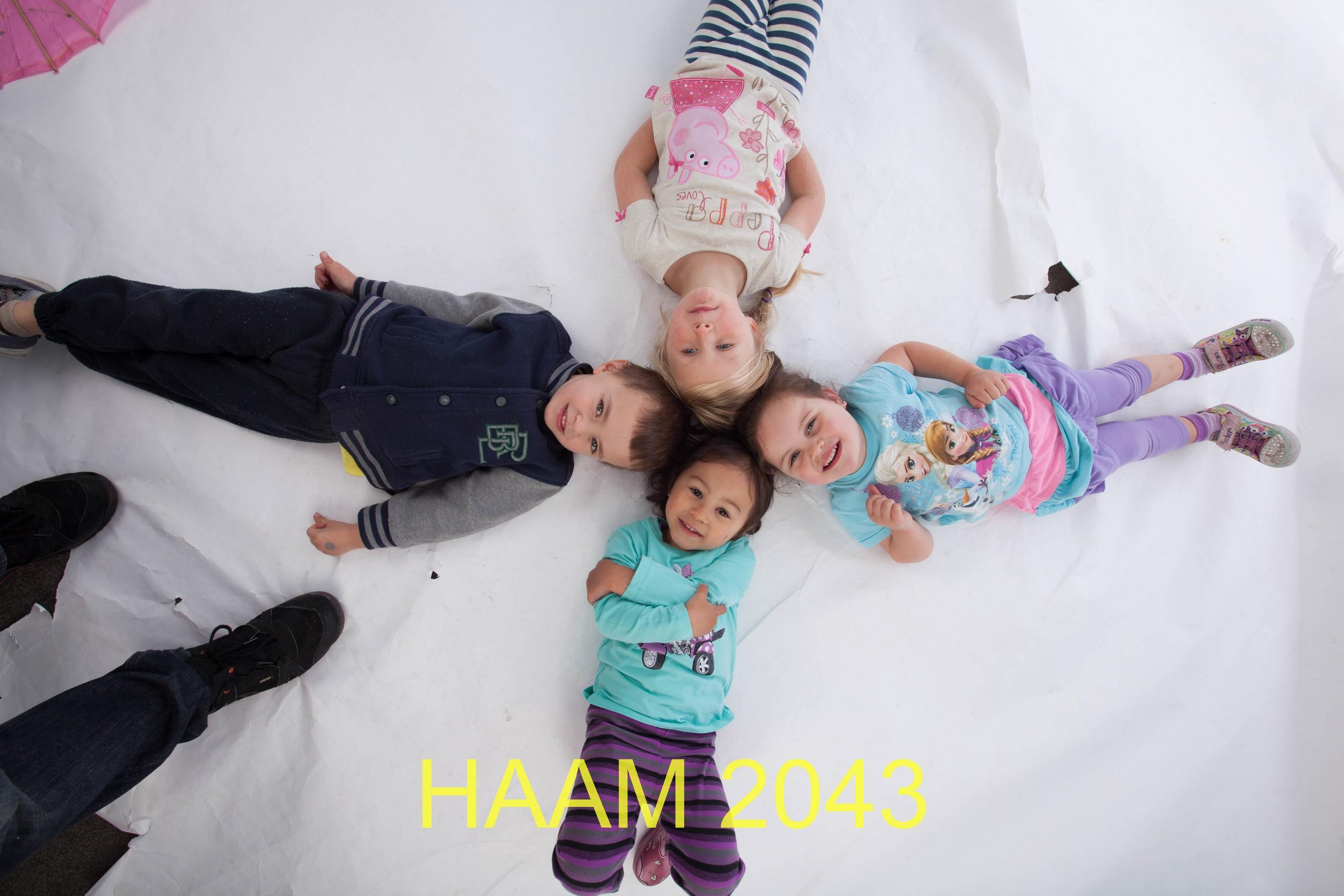 HAAM 2043