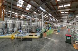 UHCC Phils Brewery Trip 8141