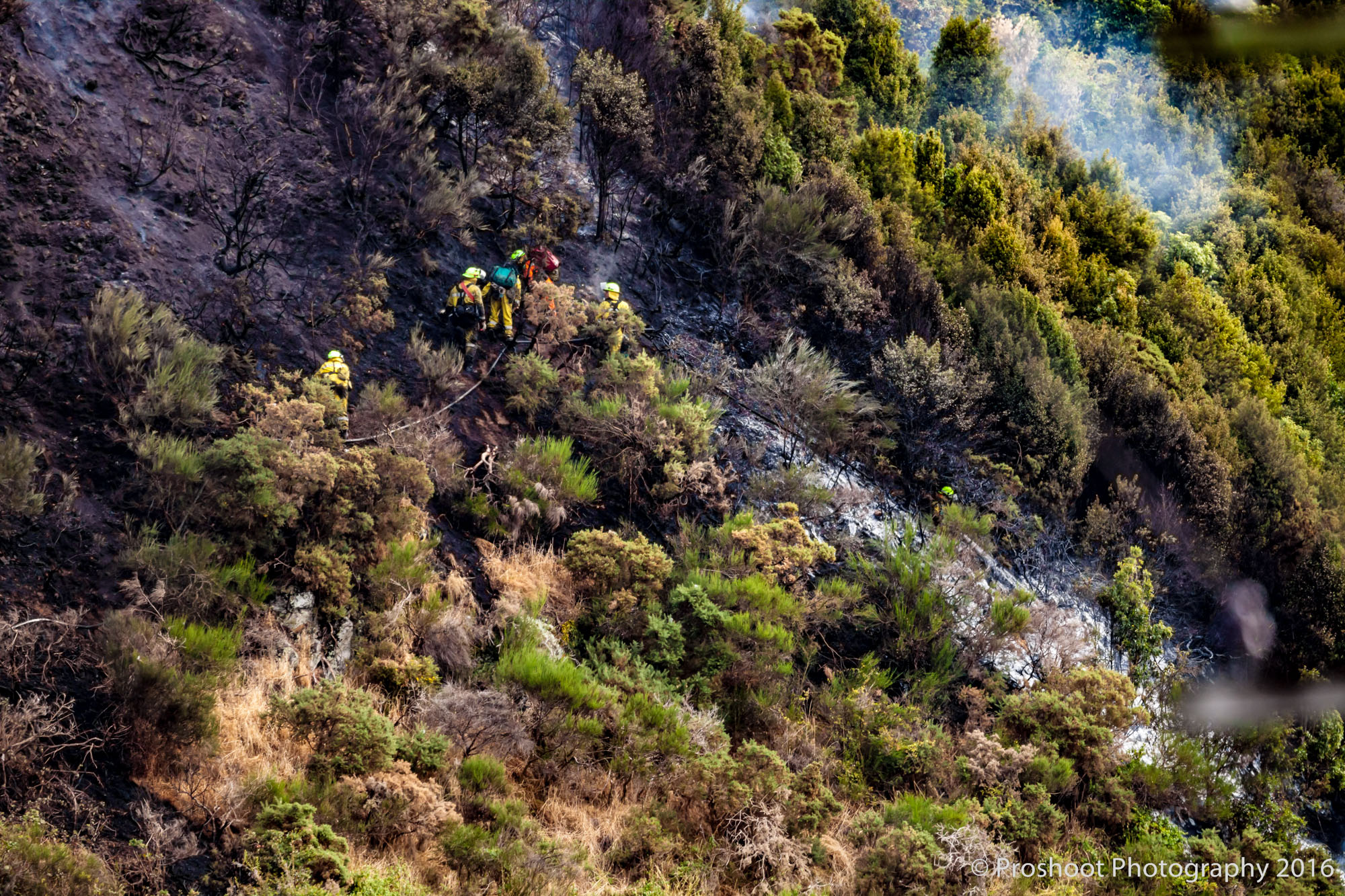 Te Marua Rural Fire 9044