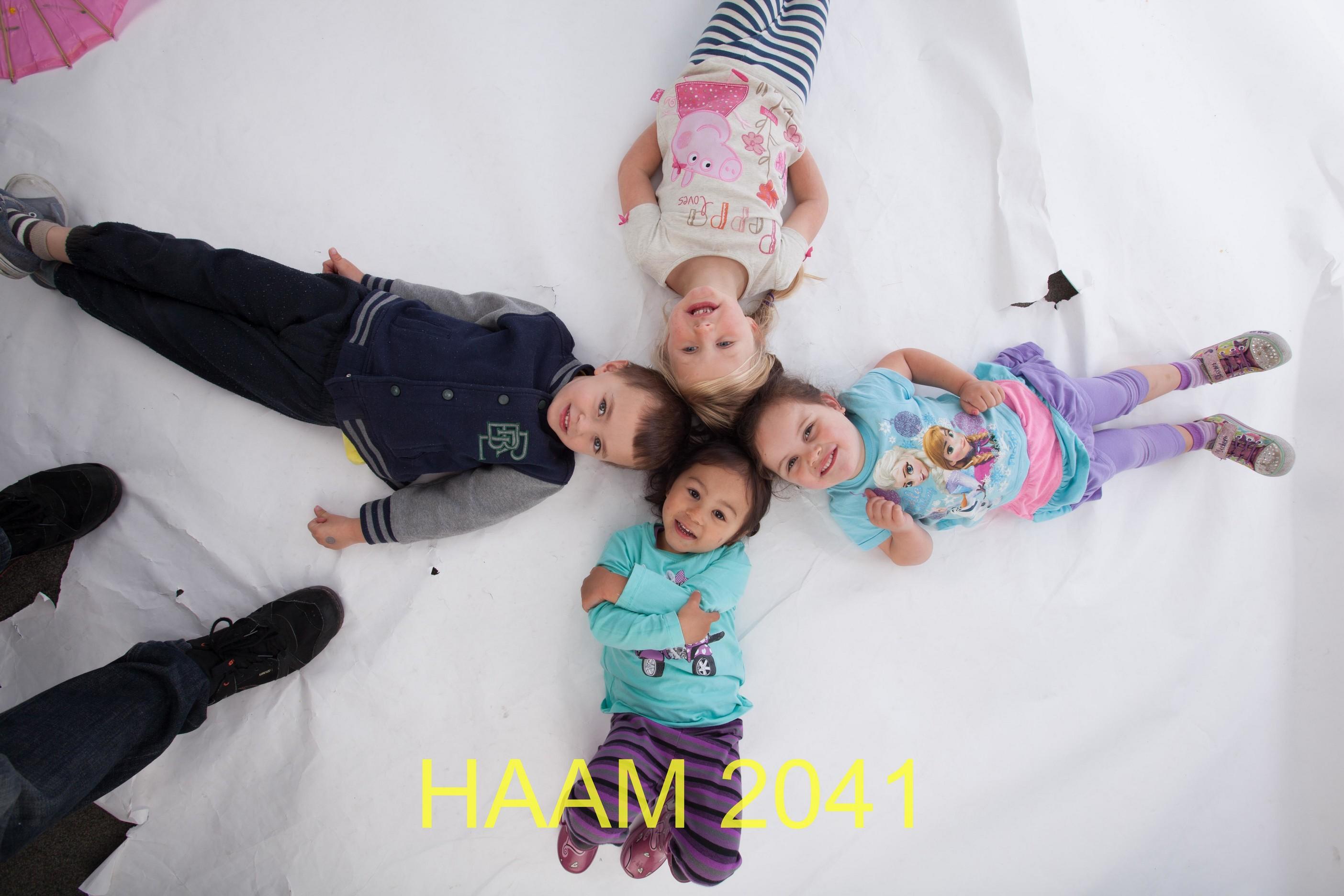 HAAM 2041