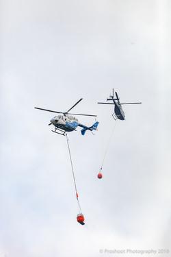 Te Marua Rural Fire 9253