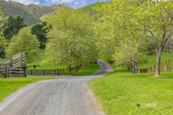 181 Settlement Road, Te Horo 8411