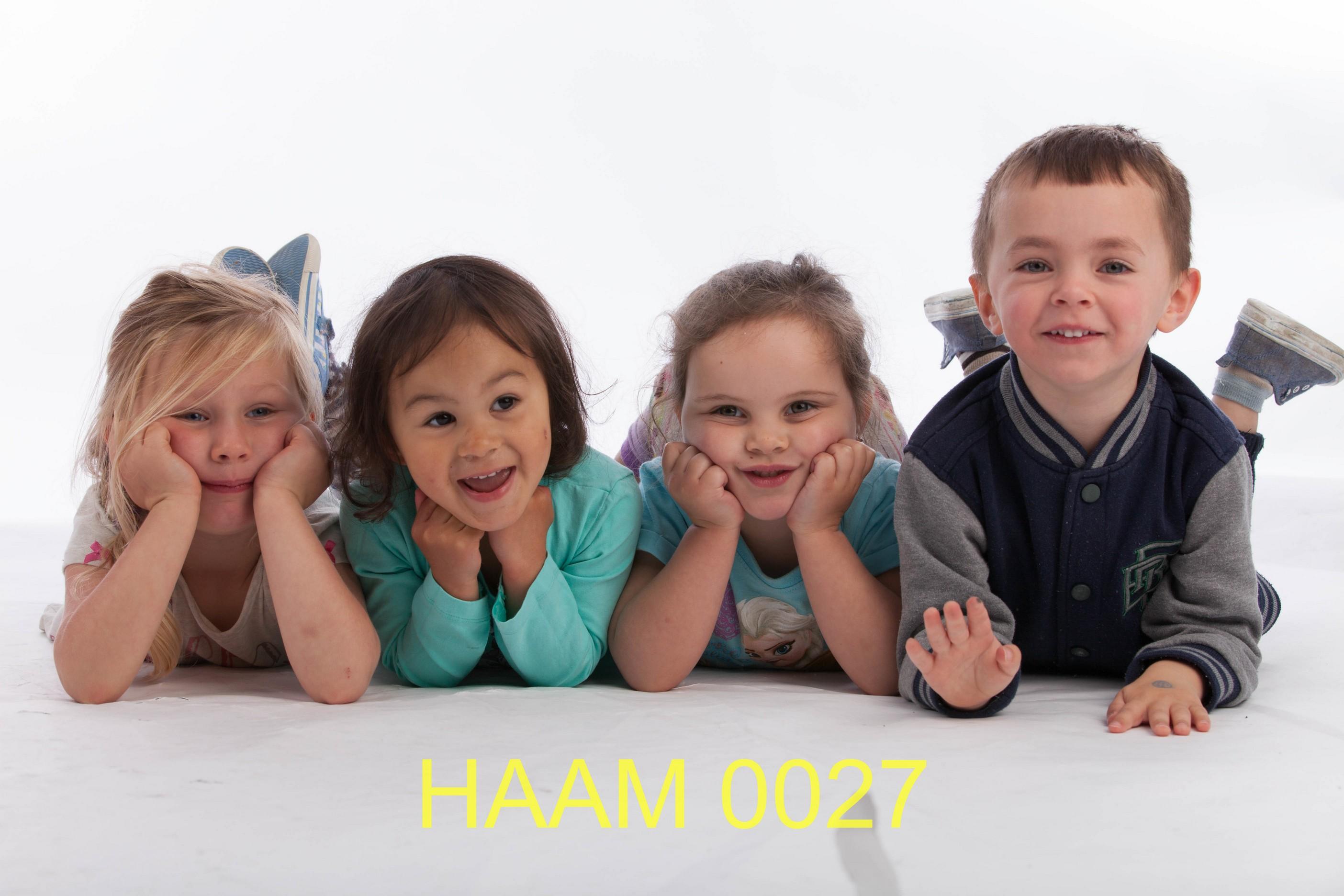 HAAM 0027
