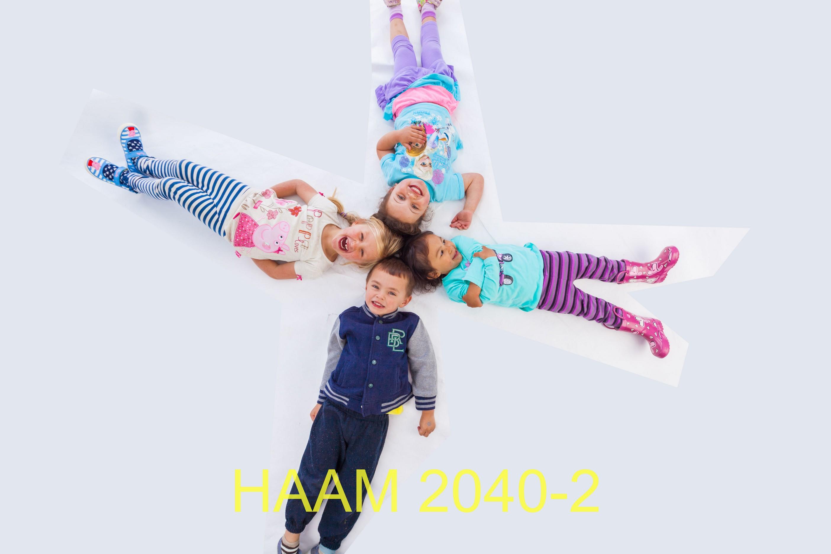 HAAM 2040-2