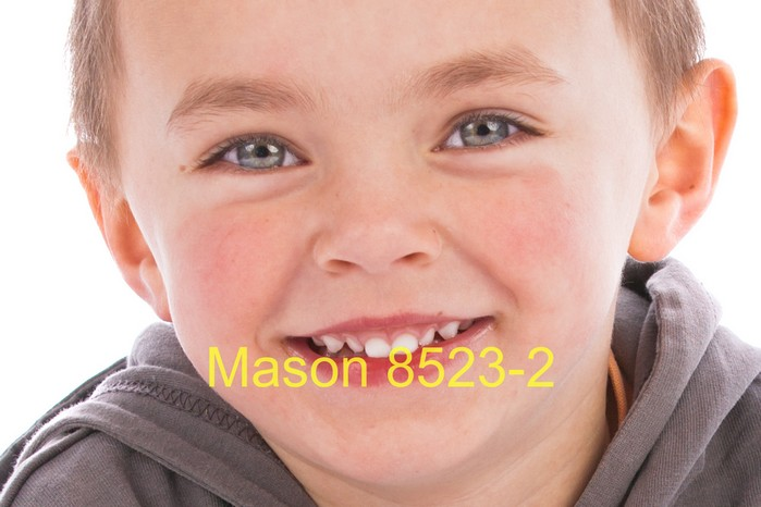 Mason 8523-2