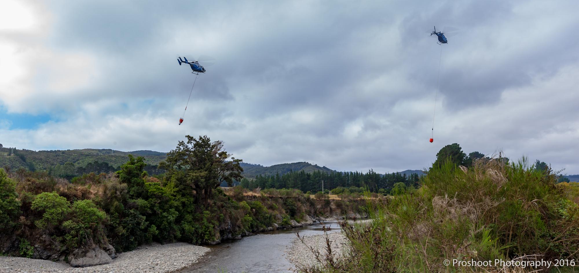 Te Marua Rural Fire 3214