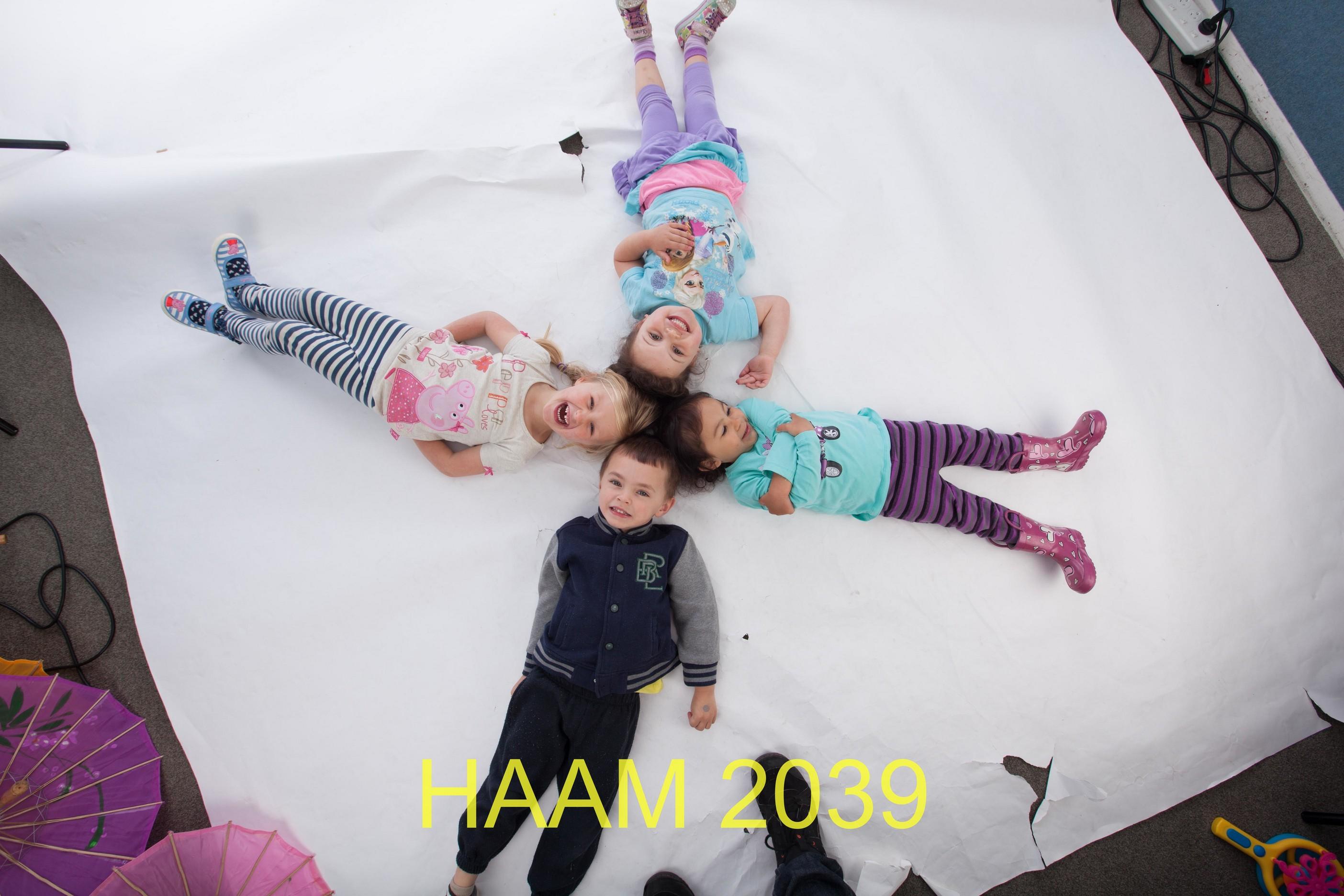 HAAM 2039