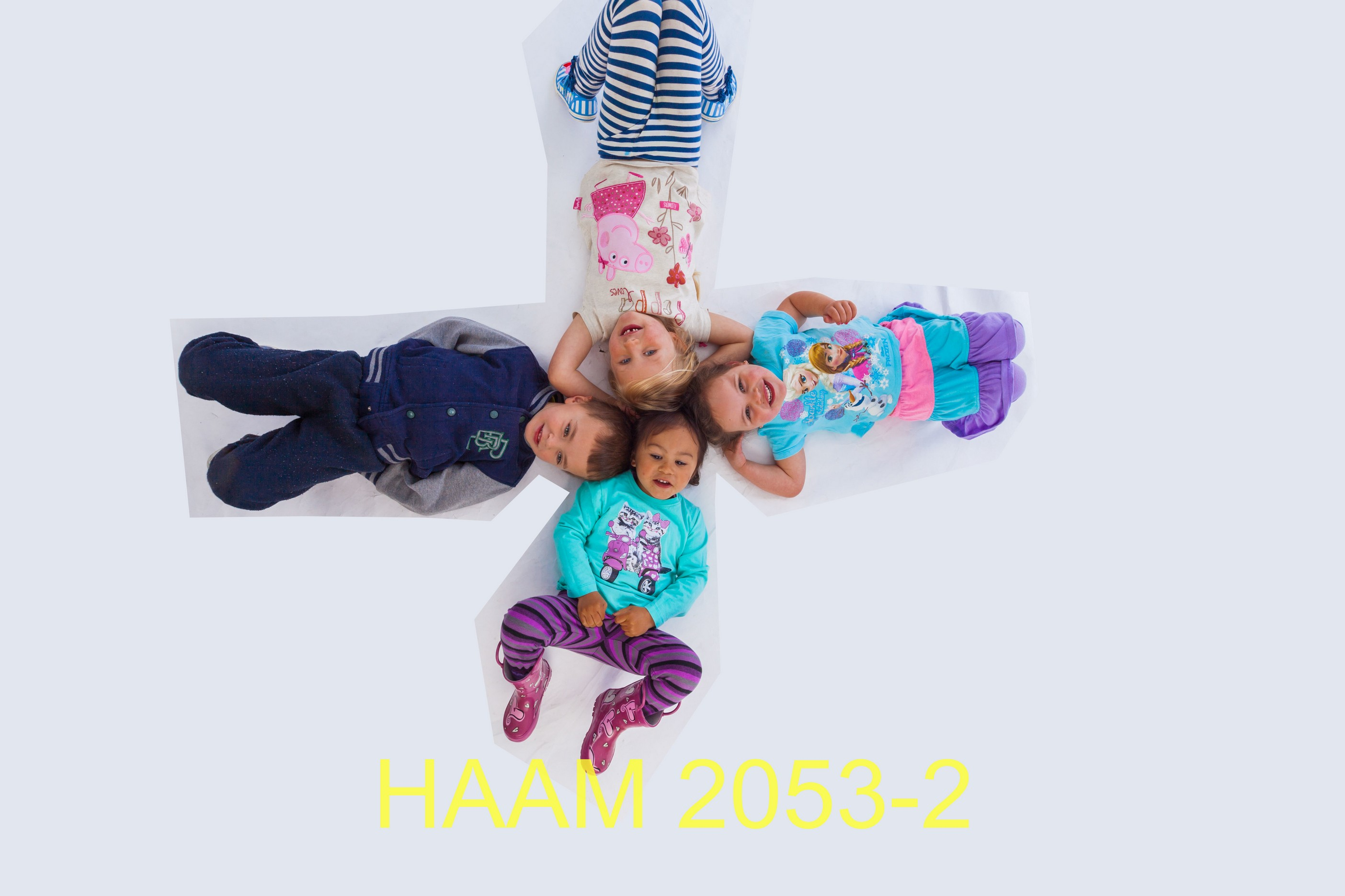 HAAM 2053-2