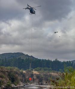 Te Marua Rural Fire 8797