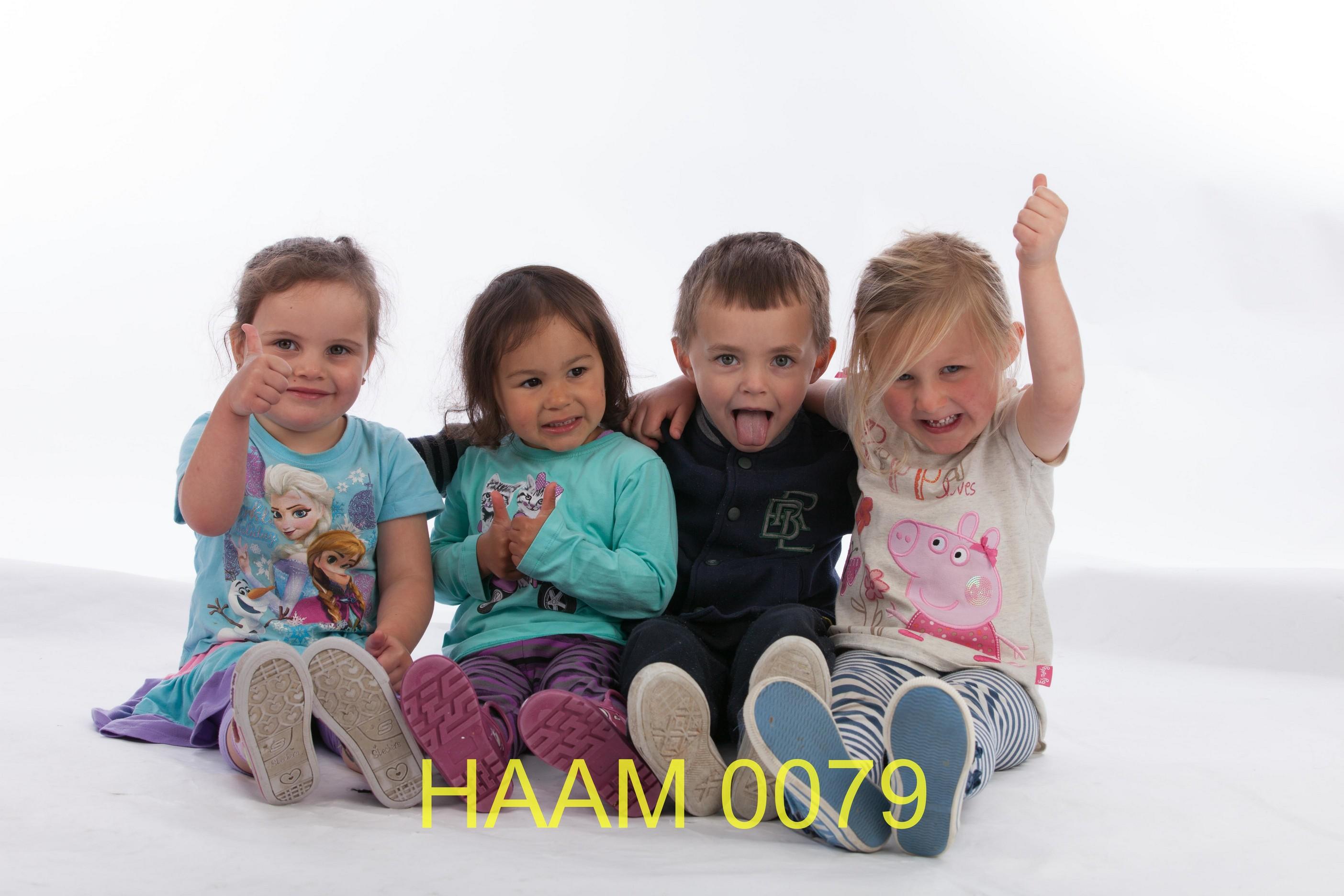 HAAM 0079