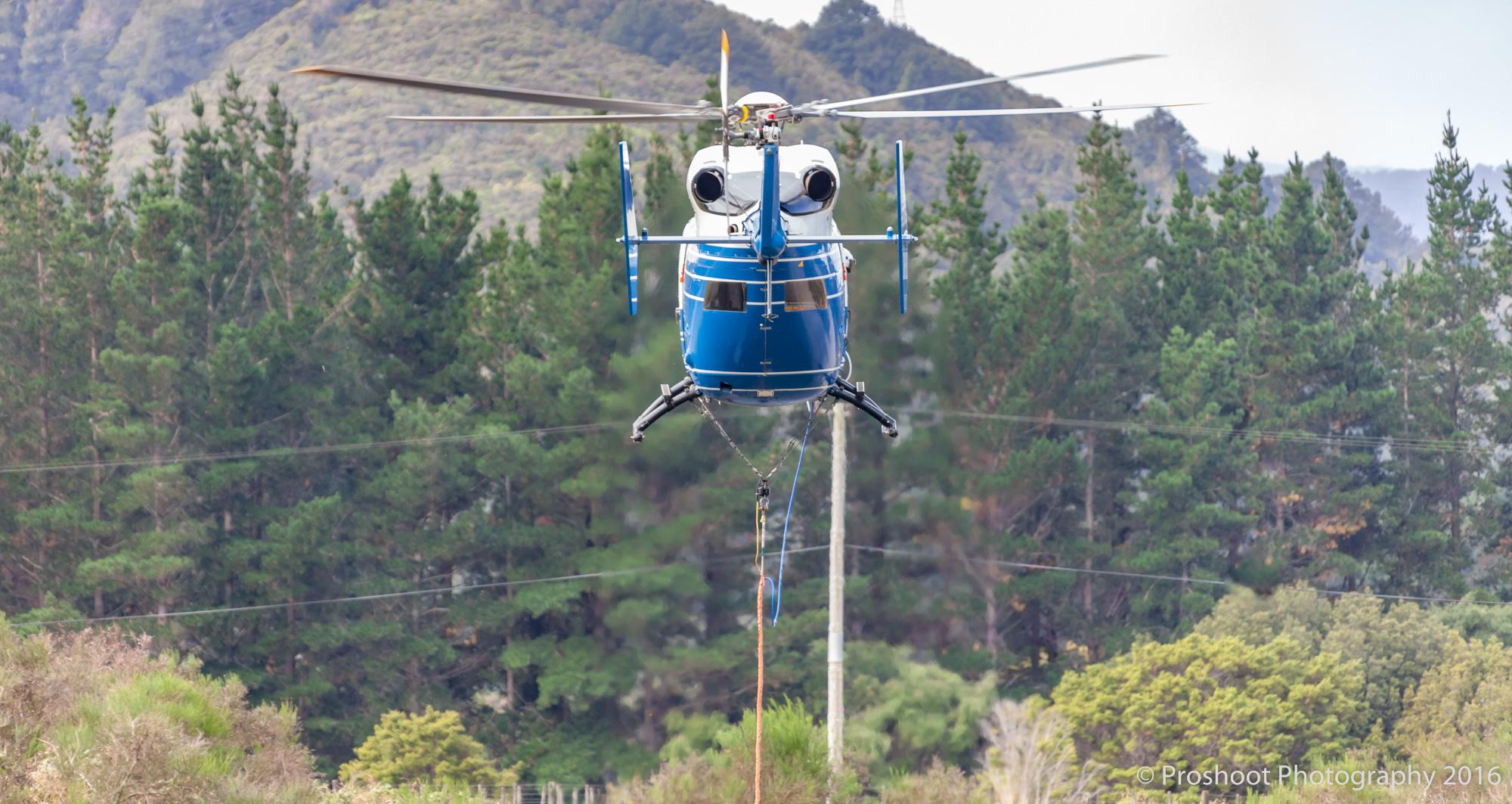 Te Marua Rural Fire 8924