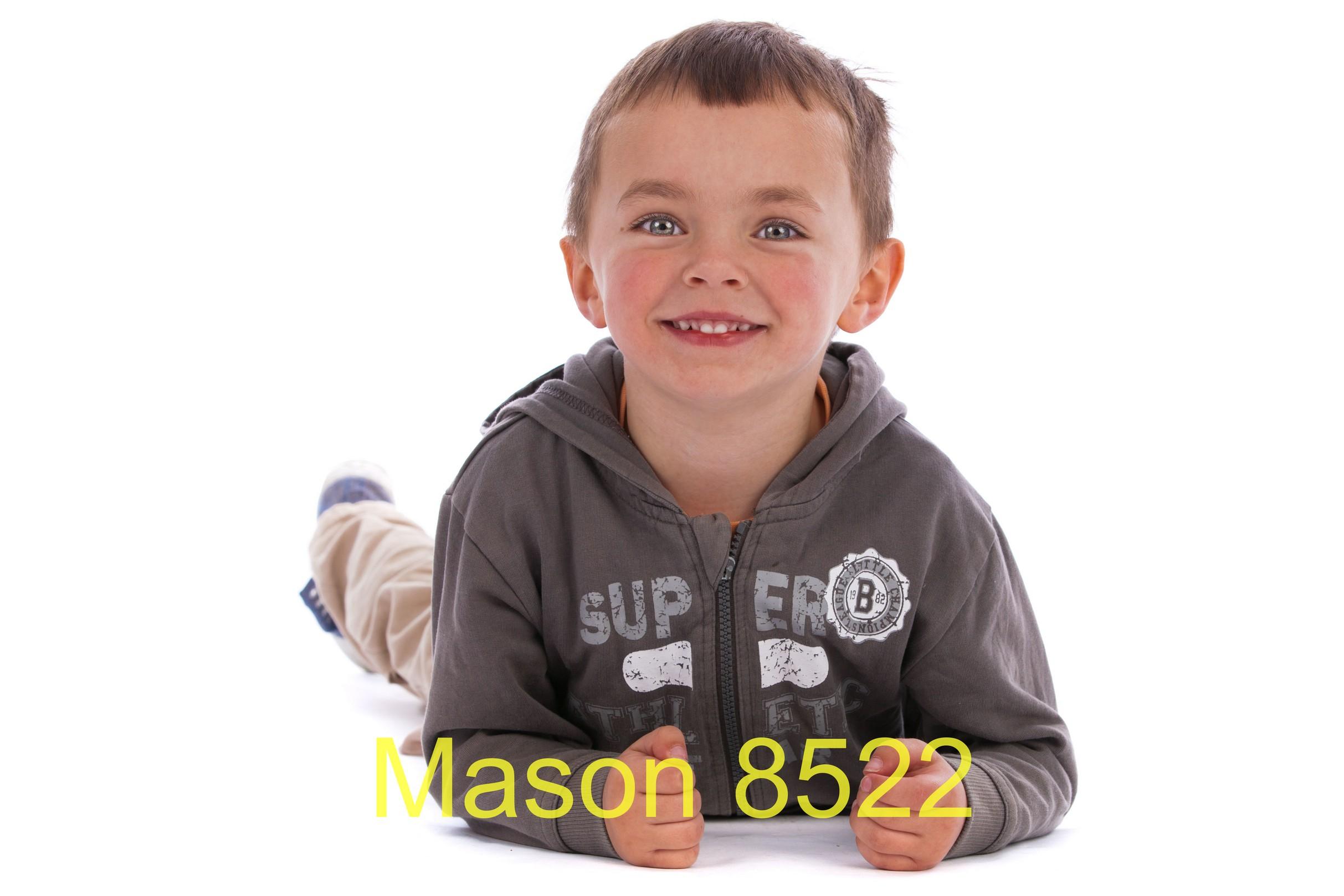 Mason 8522
