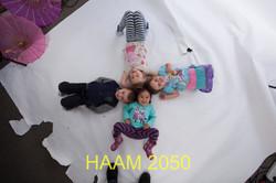 HAAM 2050