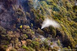 Te Marua Rural Fire 9081