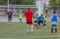 UHCC Soccer Coach 4427