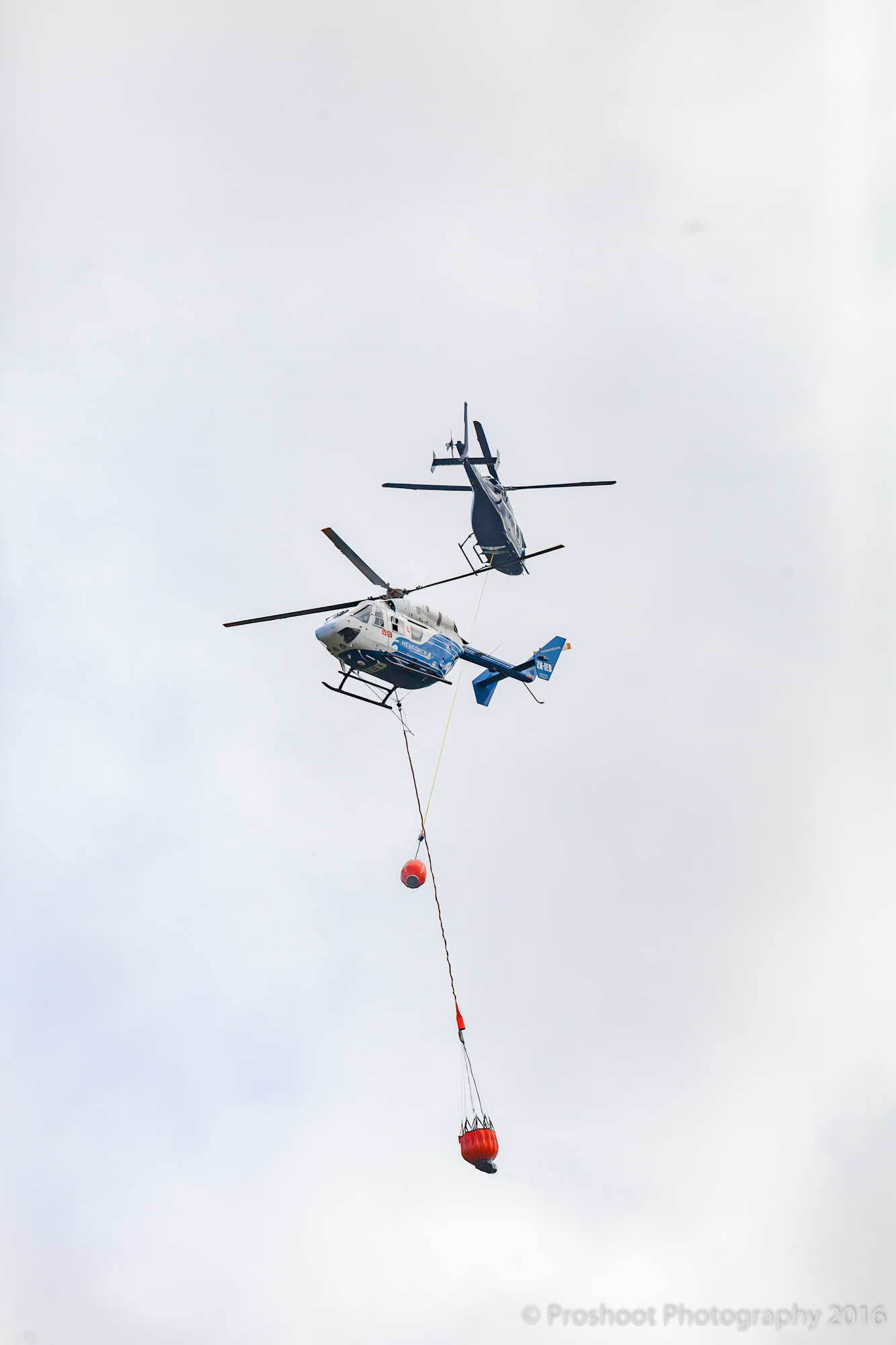 Te Marua Rural Fire 9252
