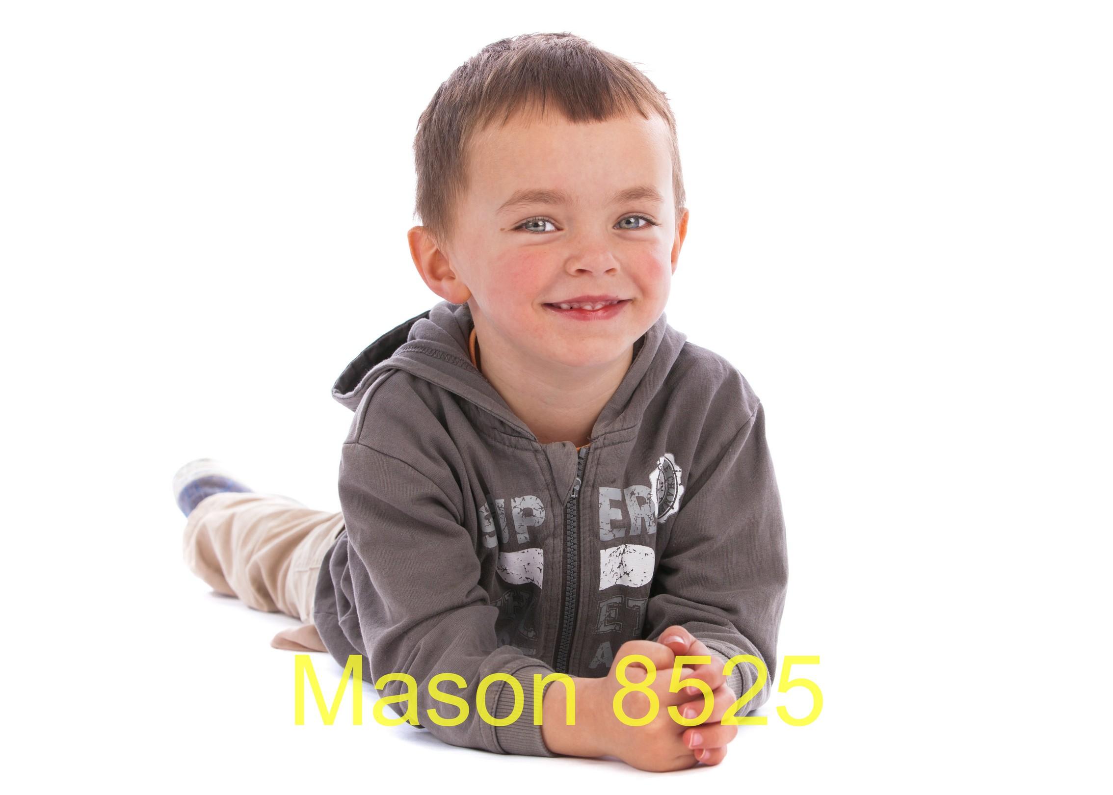 Mason 8525