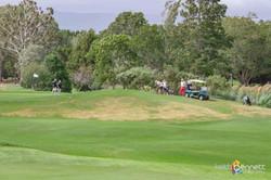 HVCC Tall Poppy Golf Day 5441