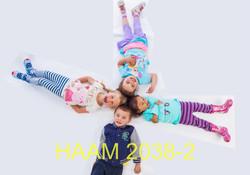 HAAM 2038-2