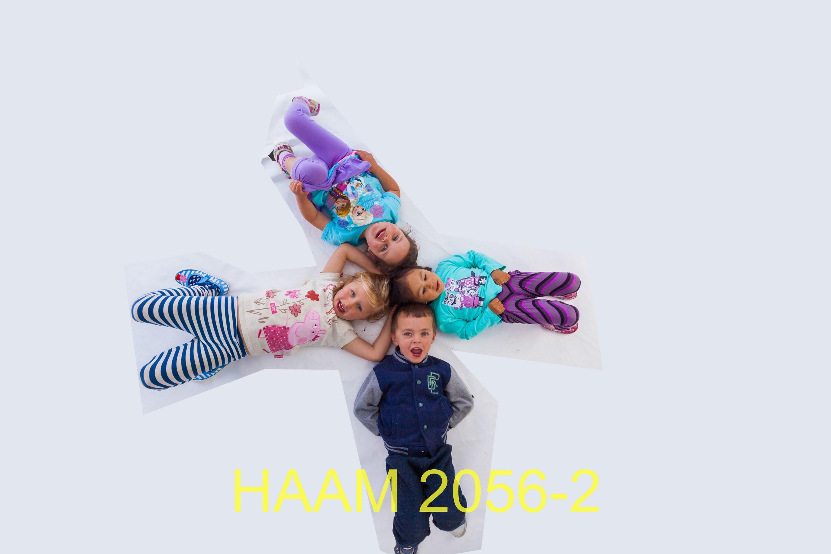 HAAM 2056-2