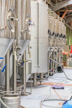 Kereru Brewing [2539]