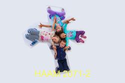 HAAM 2071-2