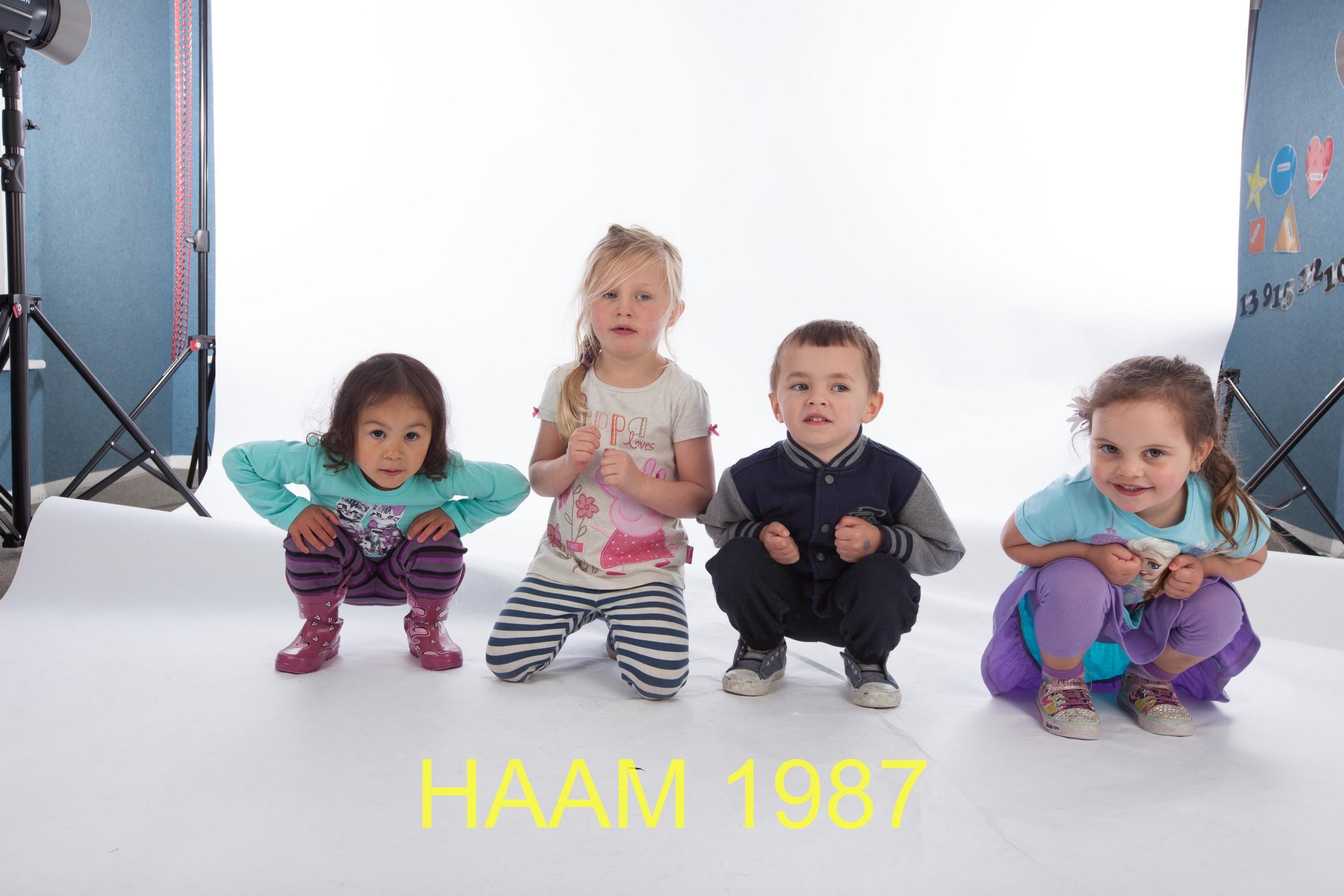 HAAM 1987