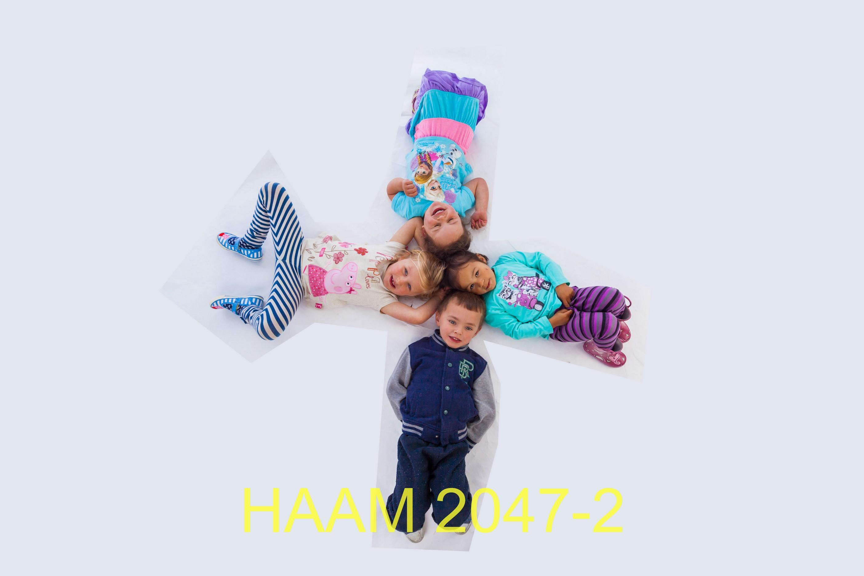 HAAM 2047-2