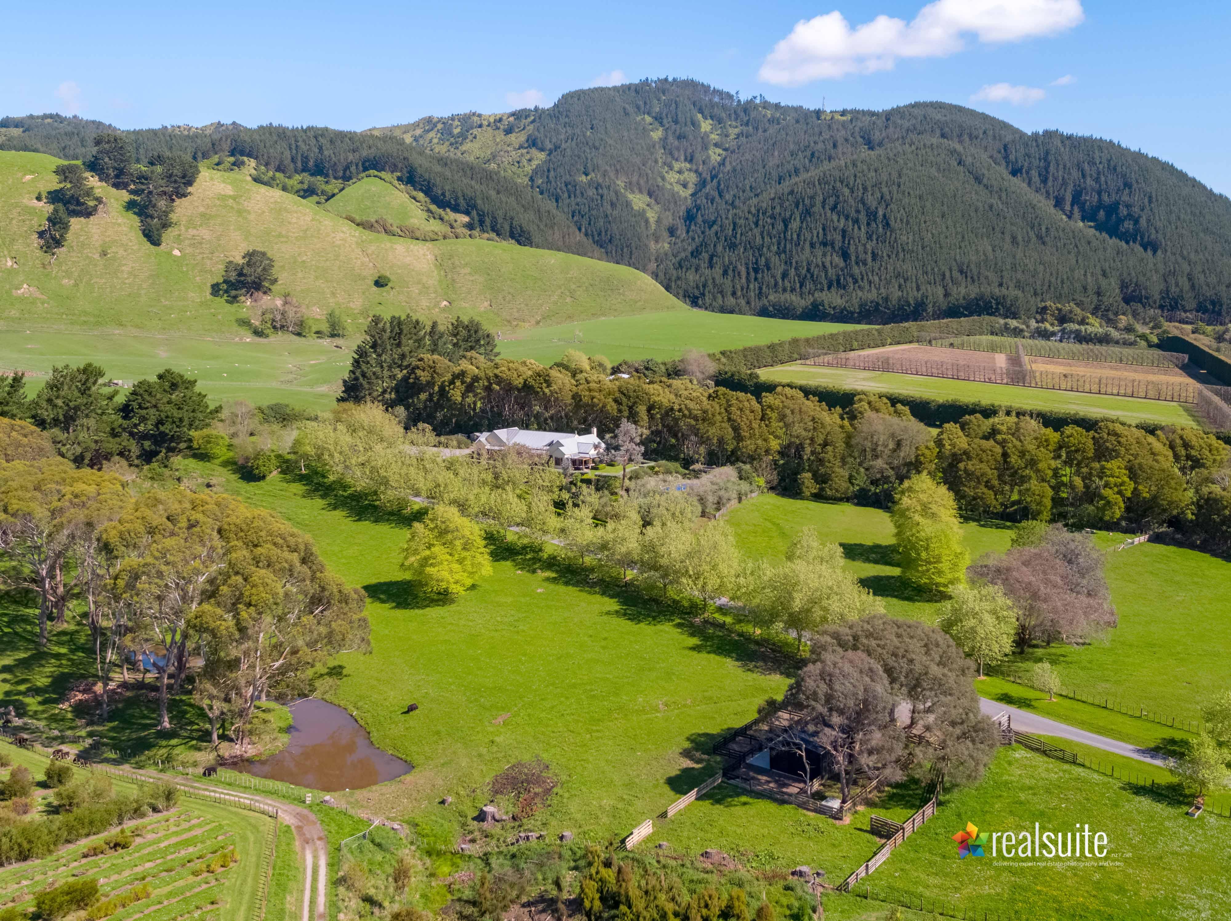 181 Settlement Road, Te Horo Aerial 0693