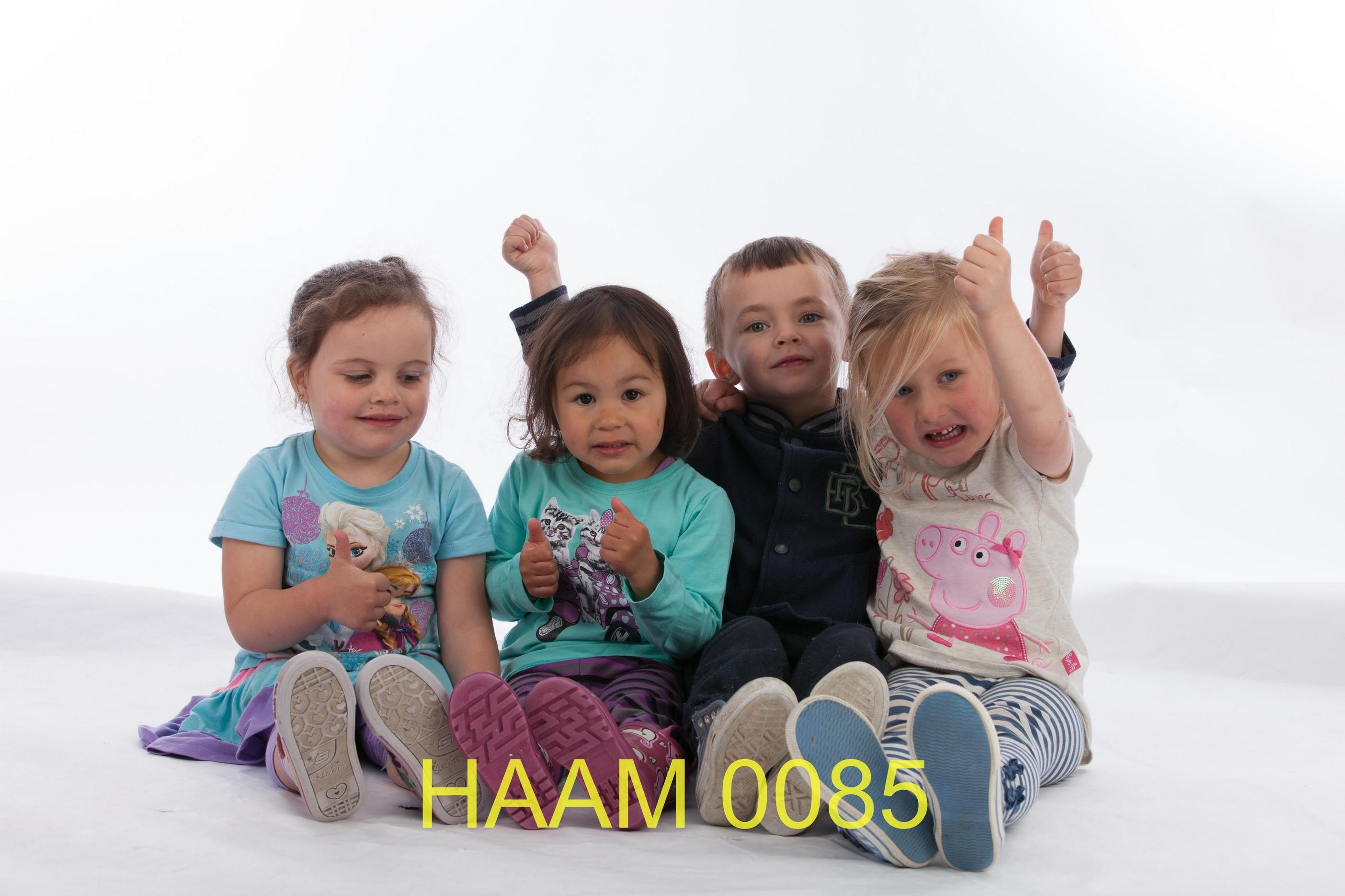 HAAM 0085