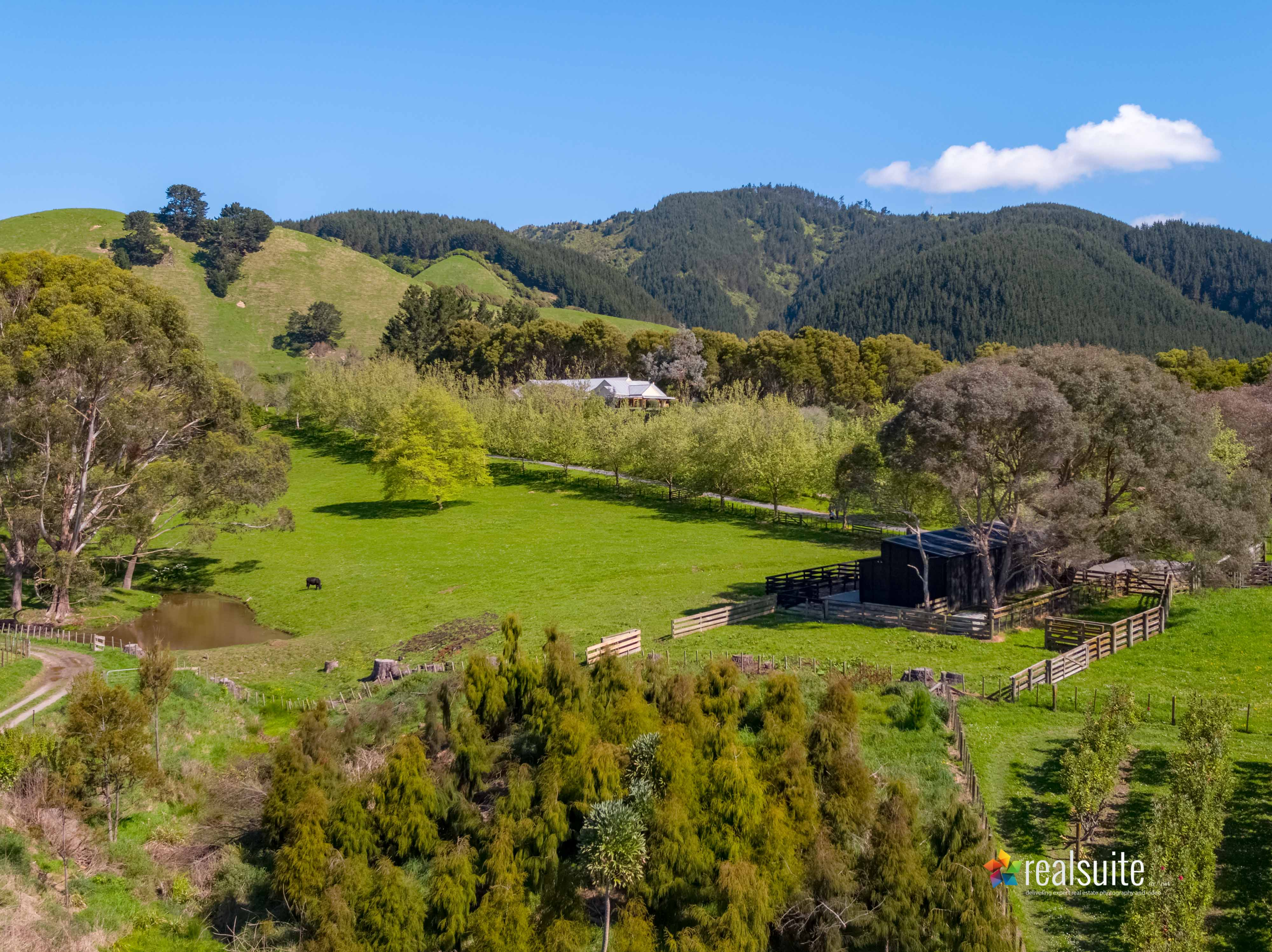 181 Settlement Road, Te Horo Aerial 0678