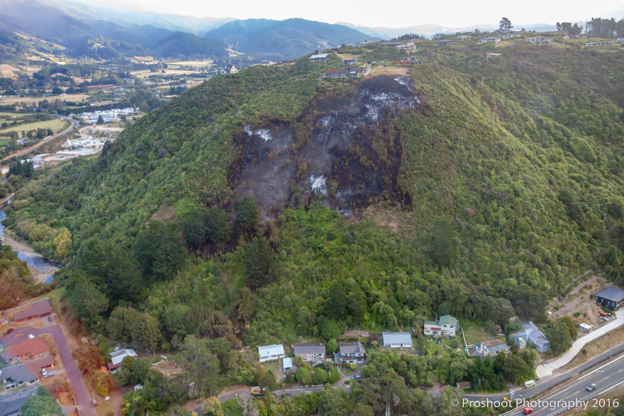 Te Marua Rural Fire 9659