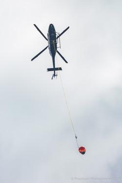 Te Marua Rural Fire 8791