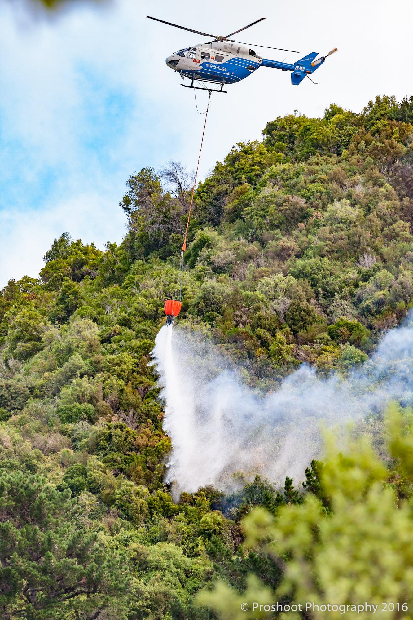Te Marua Rural Fire 9235