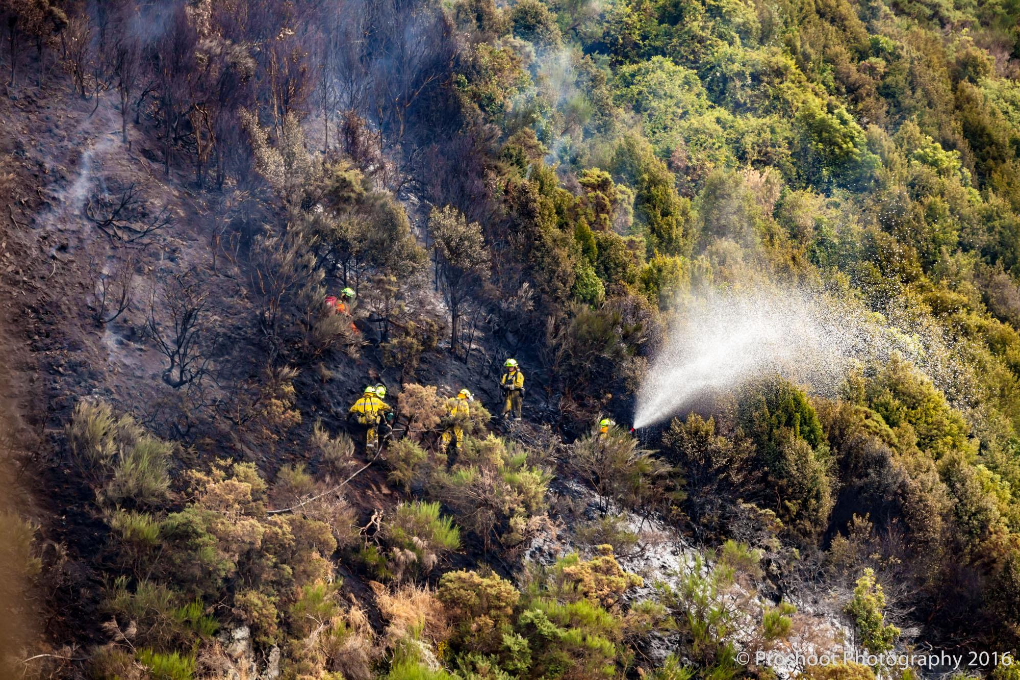 Te Marua Rural Fire 9080