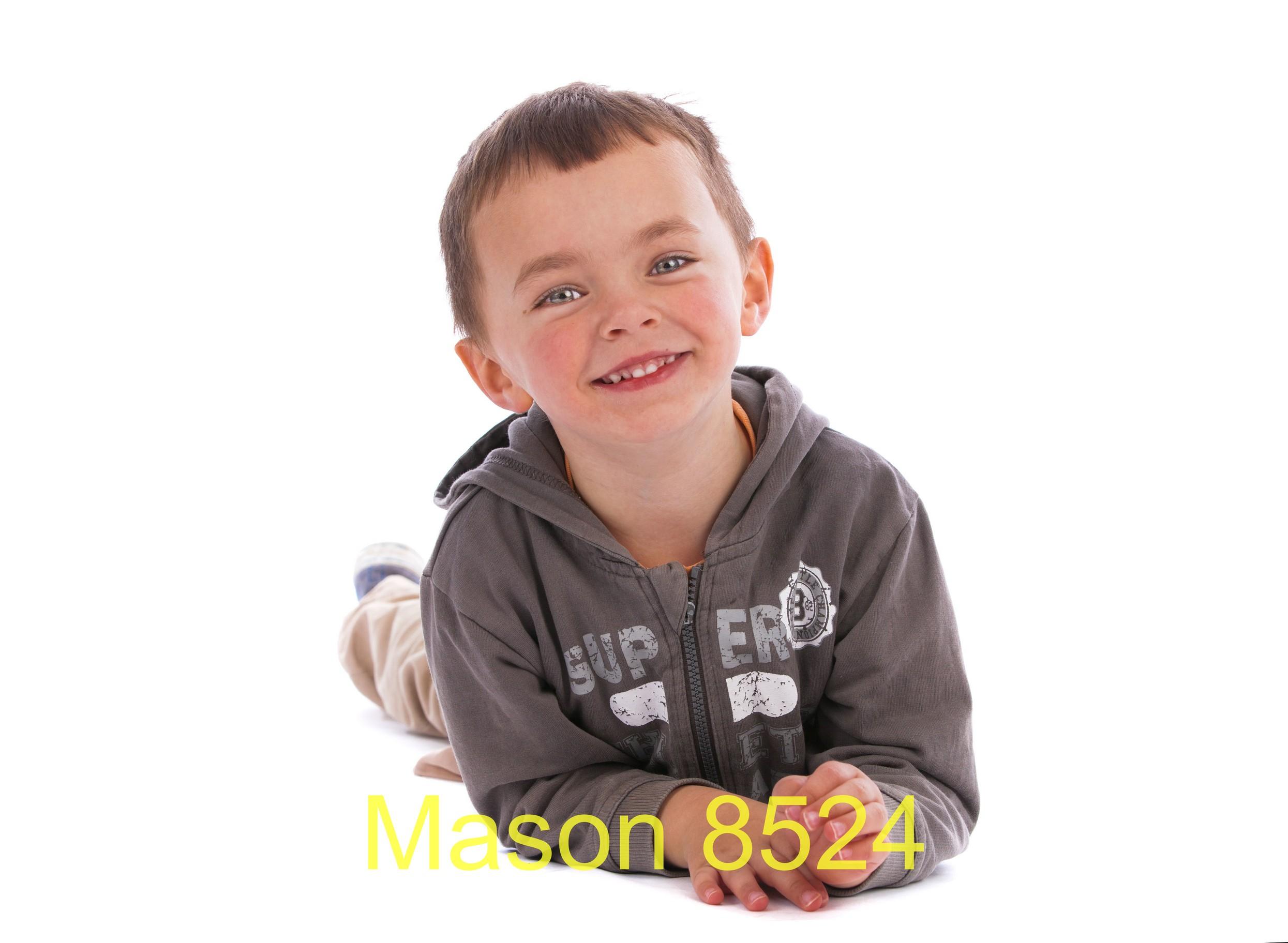 Mason 8524