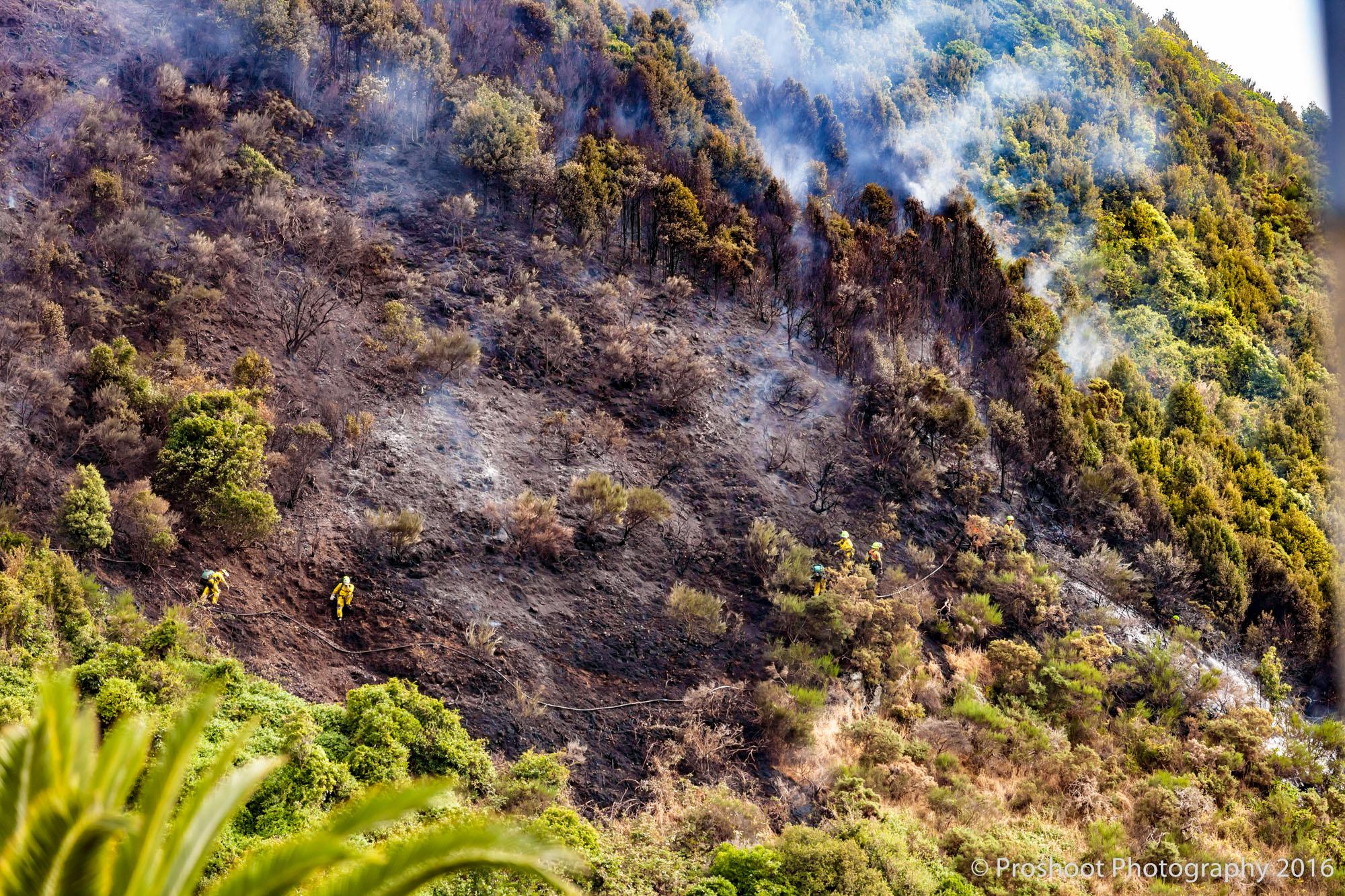 Te Marua Rural Fire 9039