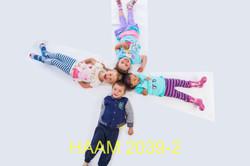 HAAM 2039-2