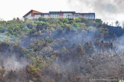 Te Marua Rural Fire 9239