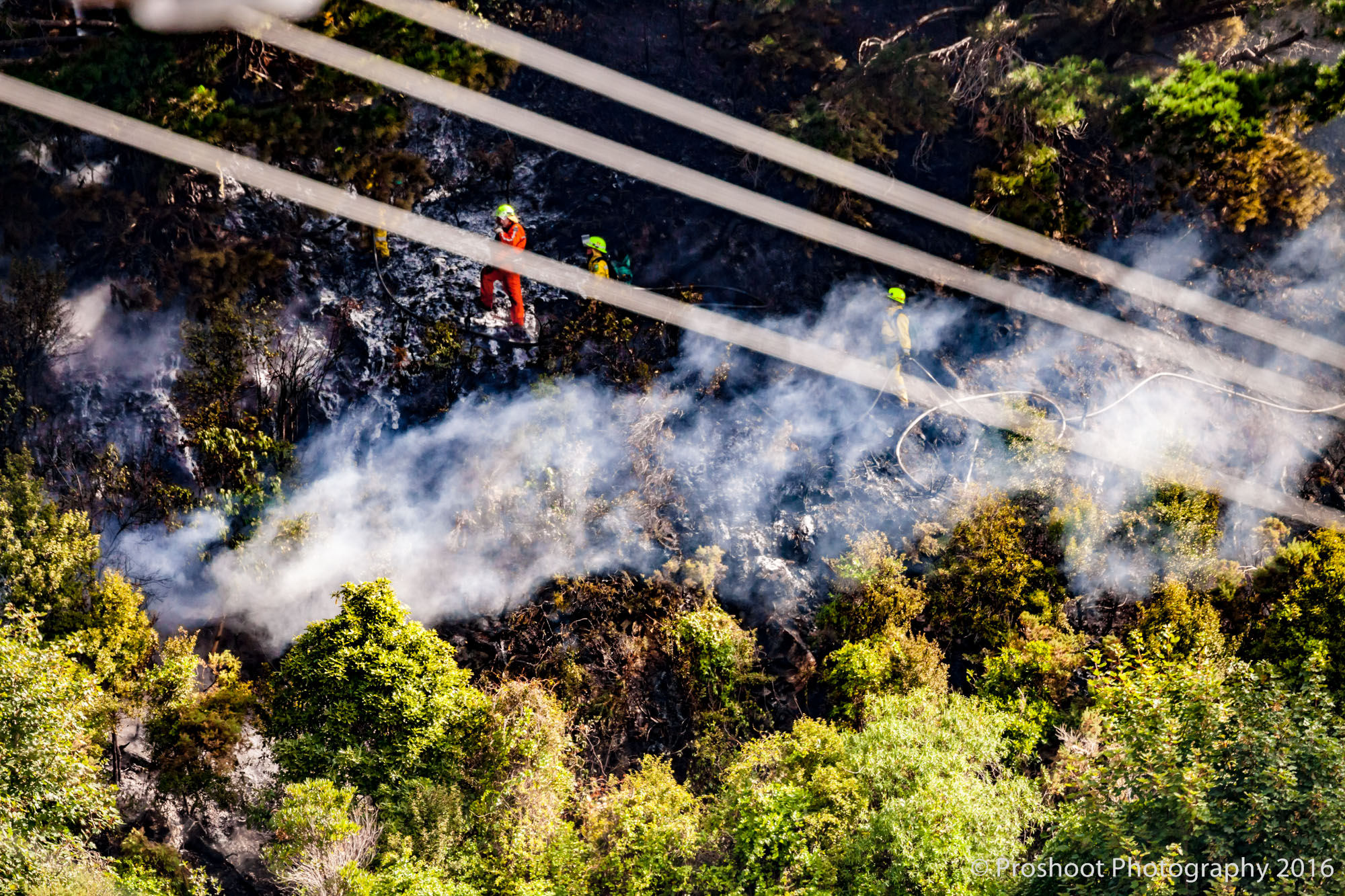 Te Marua Rural Fire 9091