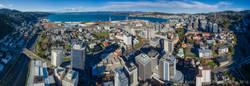 Wellington City Aerial Panorama 0069