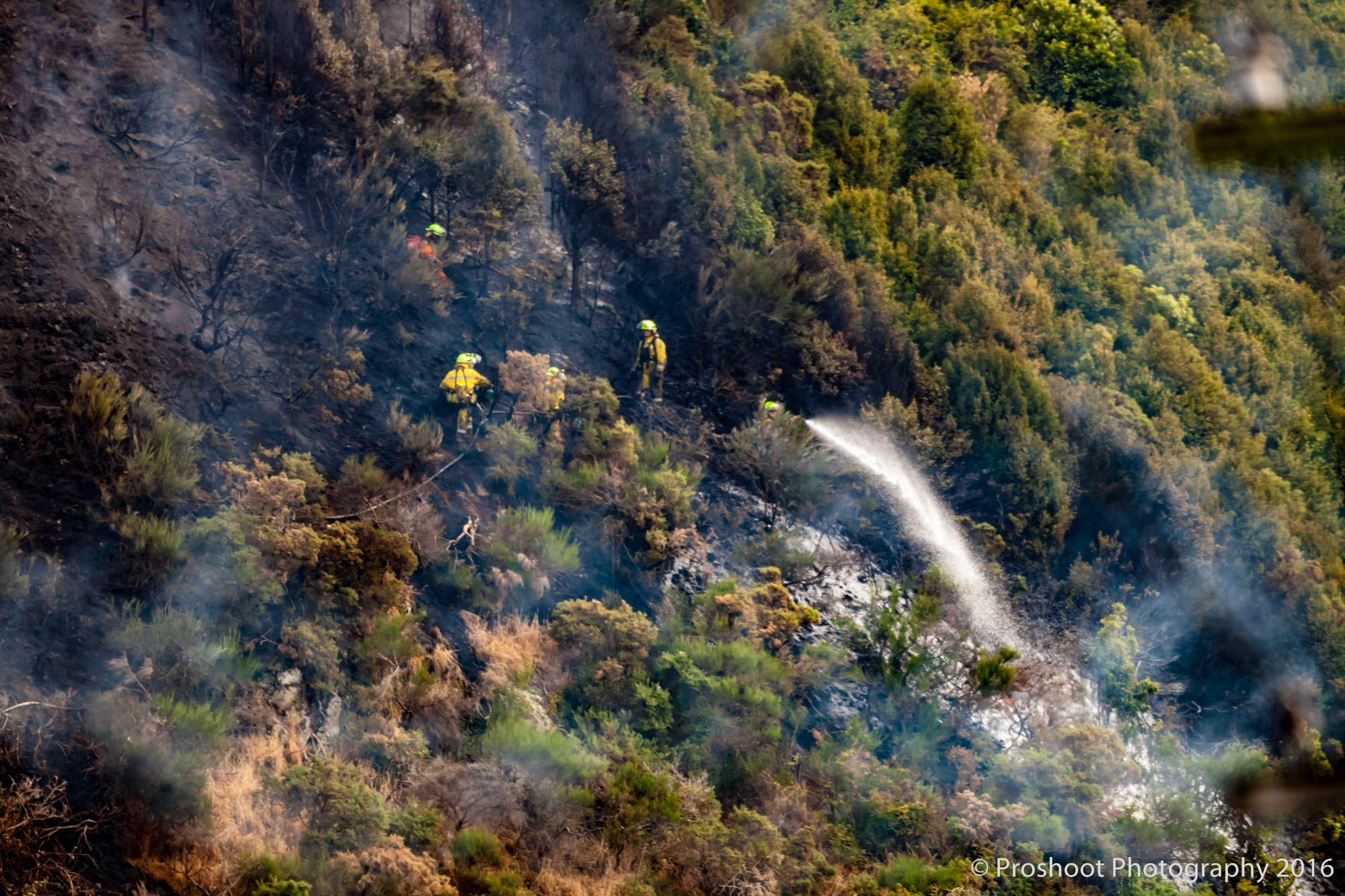 Te Marua Rural Fire 9077