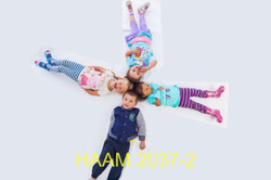HAAM 2037-2