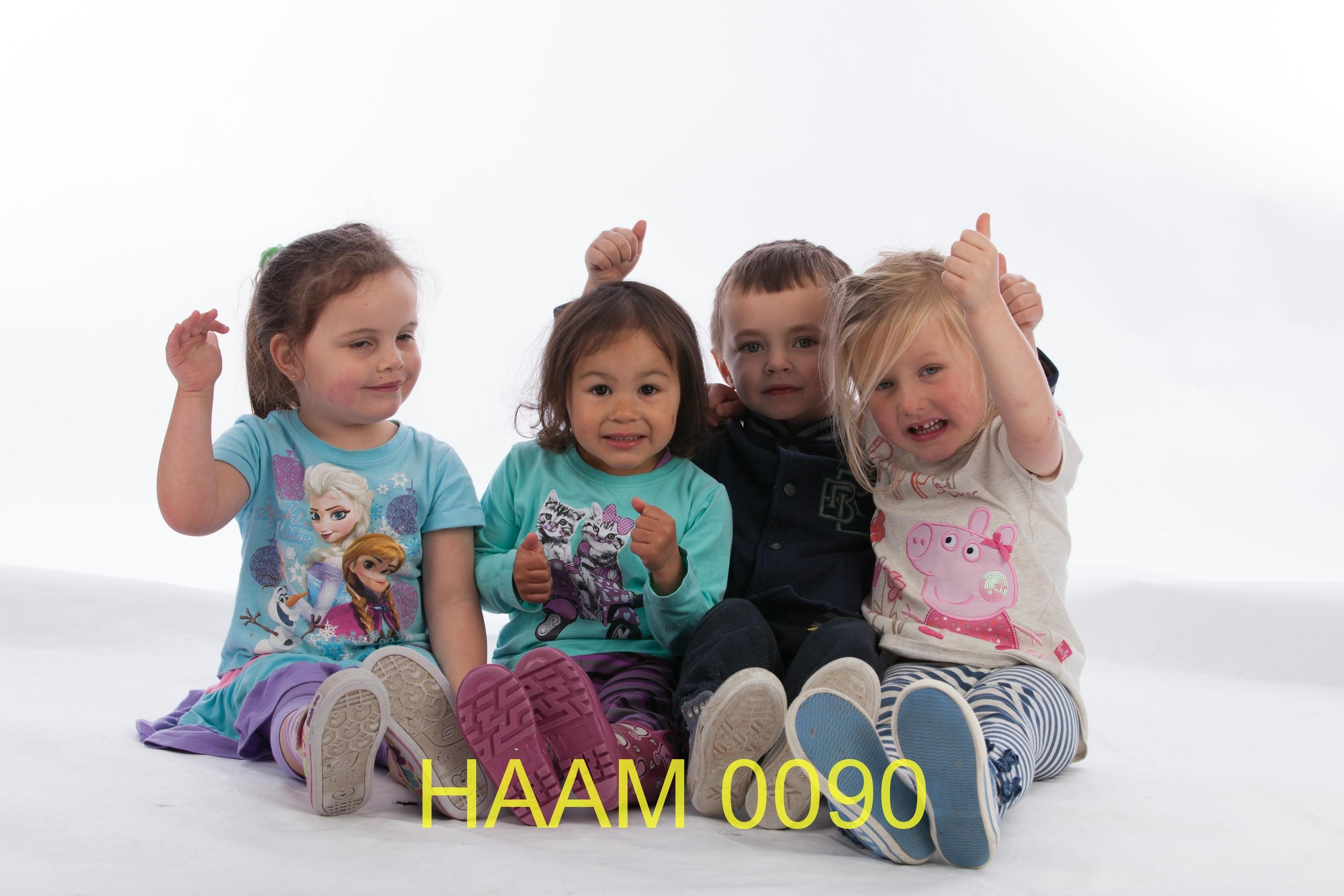 HAAM 0090