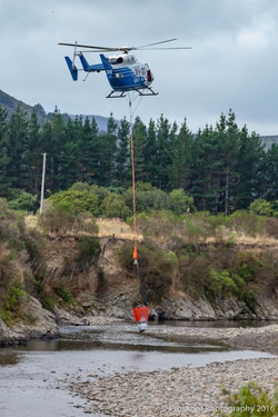 Te Marua Rural Fire 8571